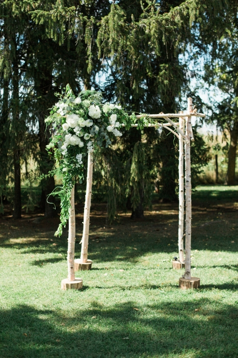 Cambium Farms, birch arbor}